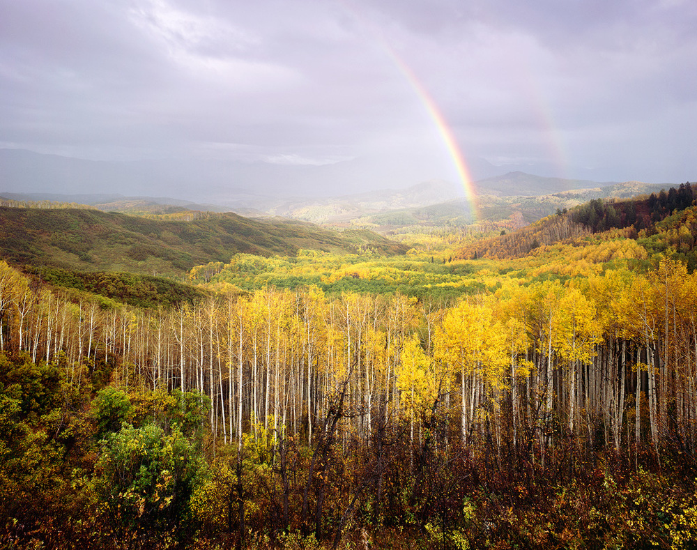 Rainbow Over the Aspen