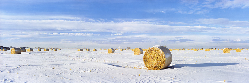"""Hay Bales and Snow"" - Prints available"