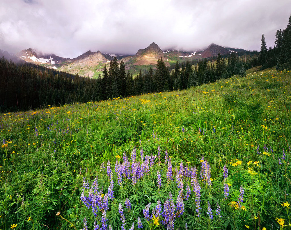 """Oh-Be-Joyful Valley"" – Lupine in bloom below the magical peaks of this amazing remote valley.  Prints available."
