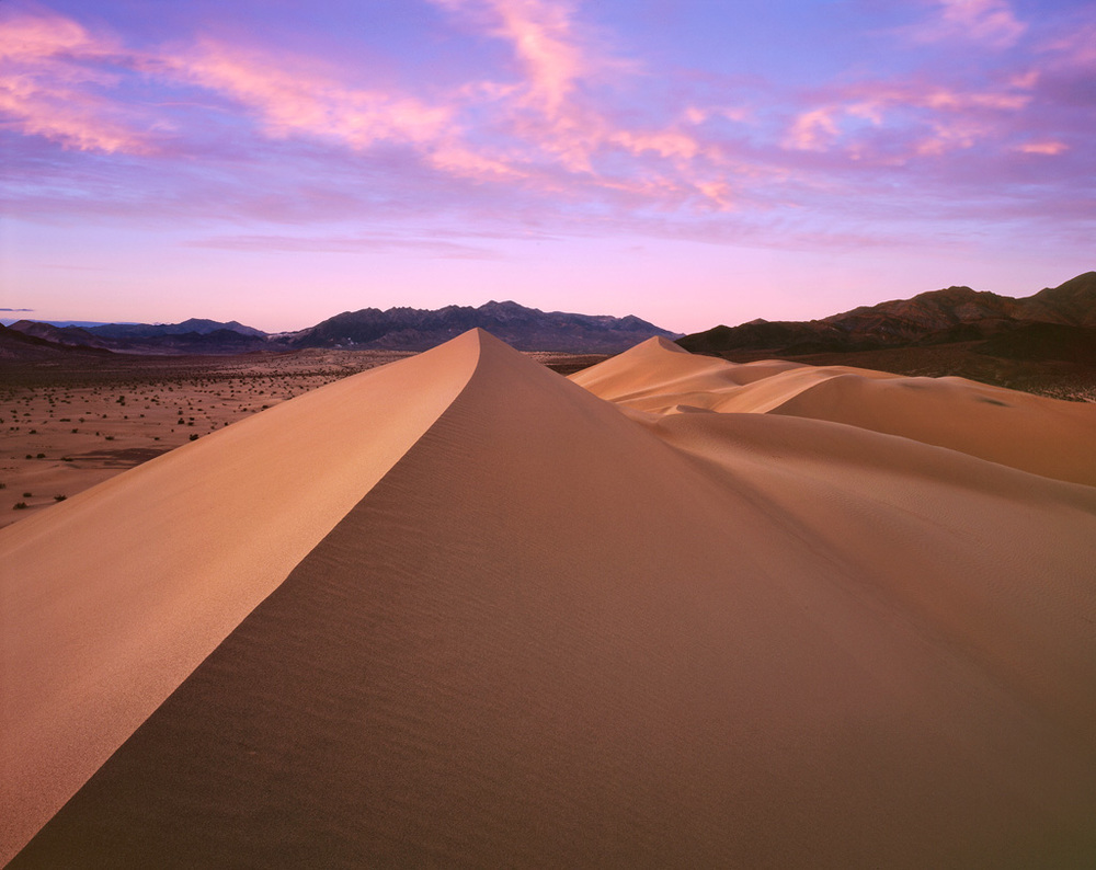 Ibex Dunes Sunset