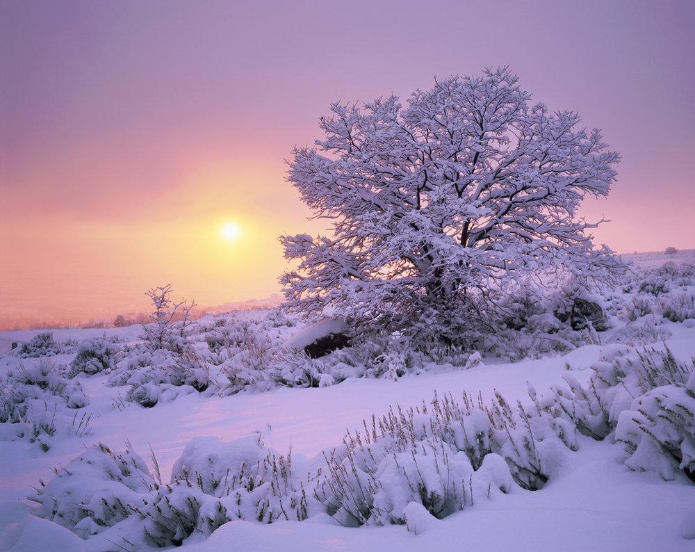 Sunset through the Winter Storm