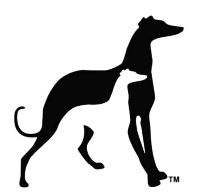 Greyhound Pets of America - Central New Hampshire Chapter