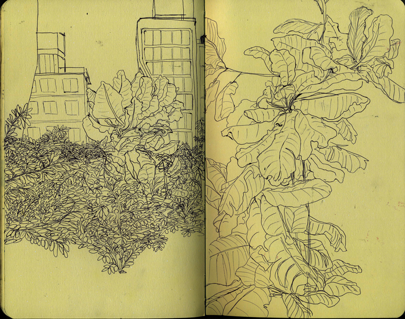 highline_sketchbook.jpg