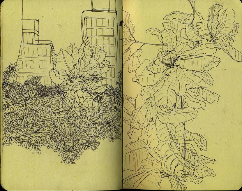 highline_sketchbook.jpg