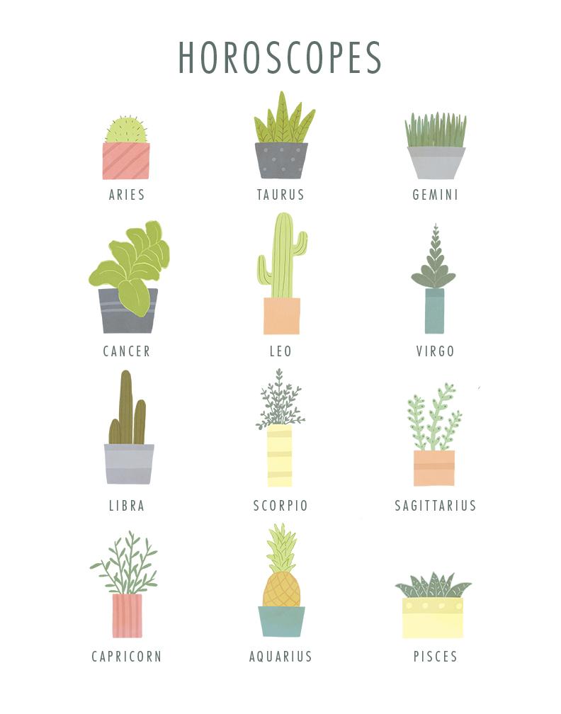 plants_illustration.jpg