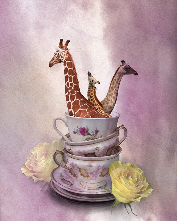 girafffe_photo.jpg