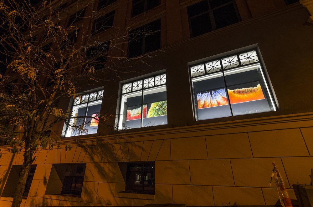 Everett Building, 39 East Market Street