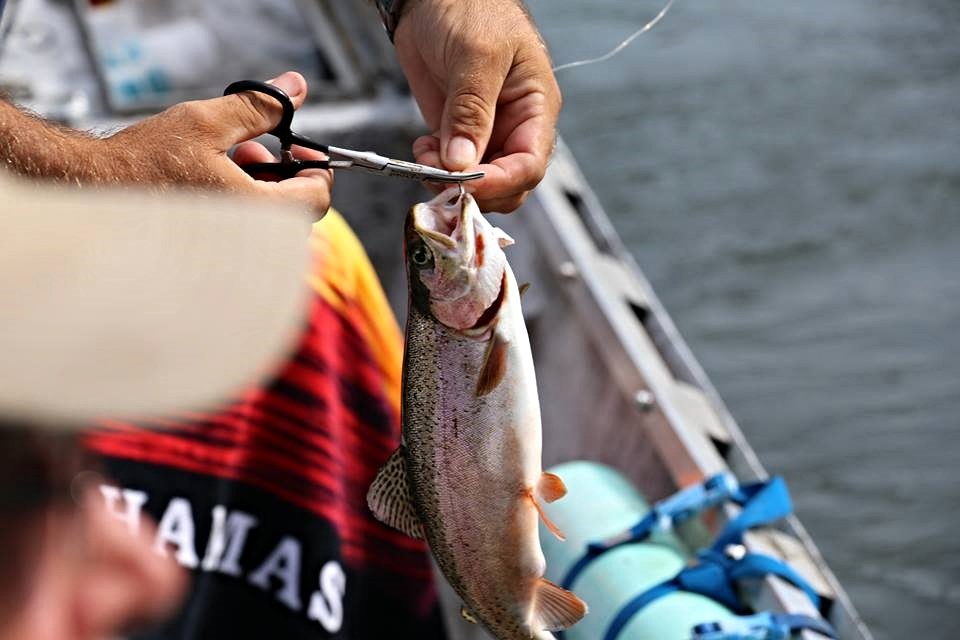 Guided Fishing Trips, Canoe & Kayak rental and Fly Fishing - Tackle Shop, Live Bait, Ice, Snacks, and more!