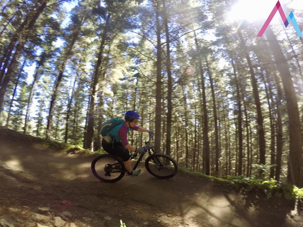CHCH Trees Jaq moutnain biking.jpg