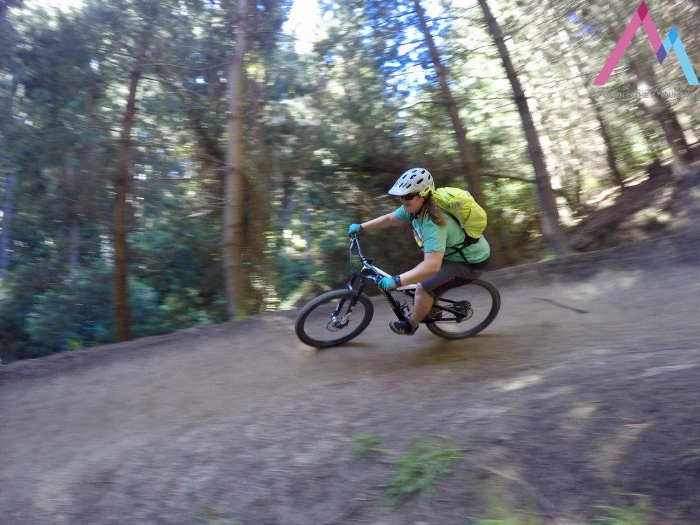 CHCH Trees Victoria riding mountain bikes.jpg