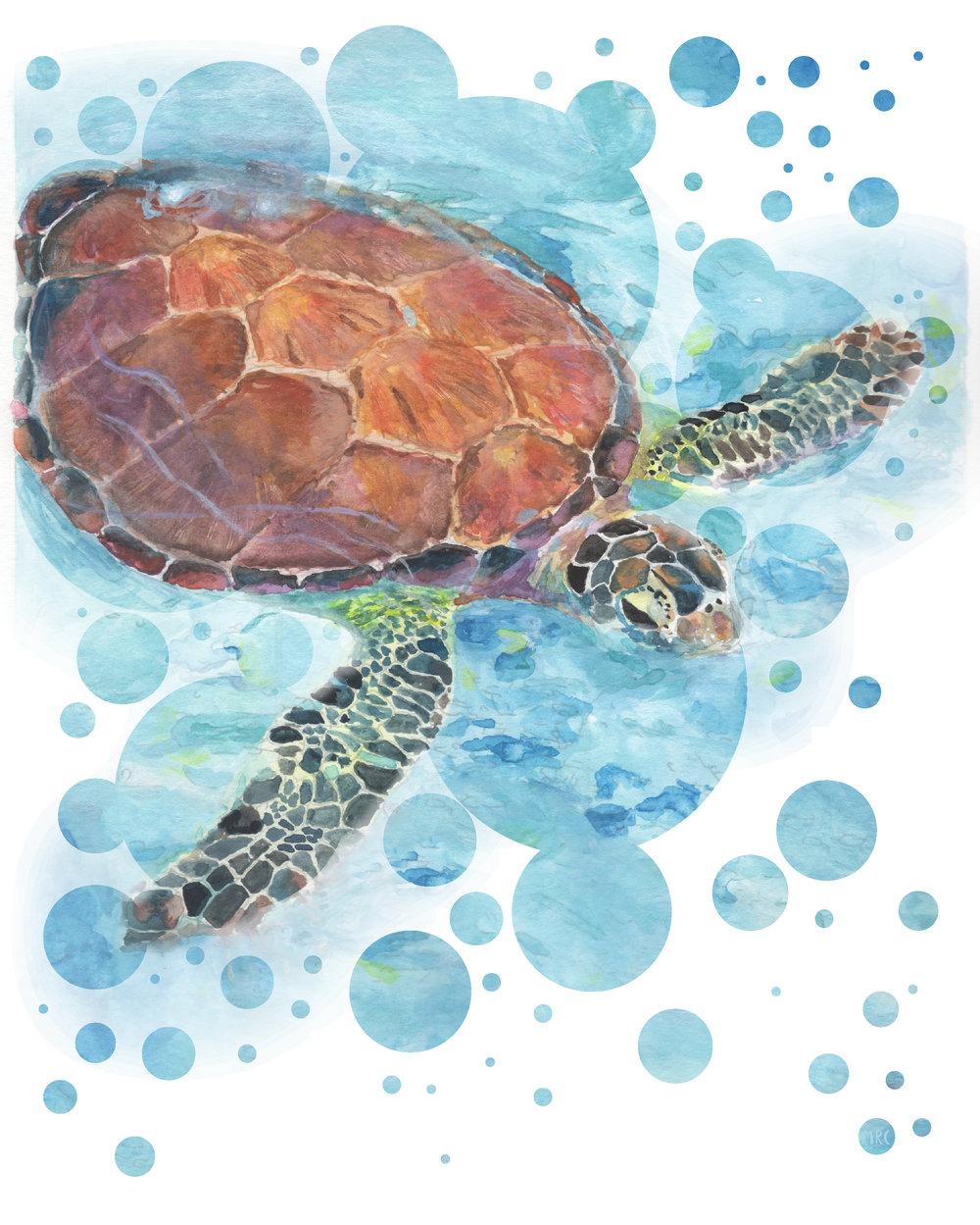 Digital Sea Turtle | 2017