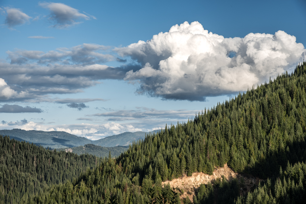Clearwater Mountain Clouds