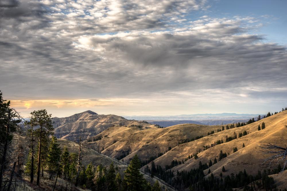 Northeastern Oregon Landscape