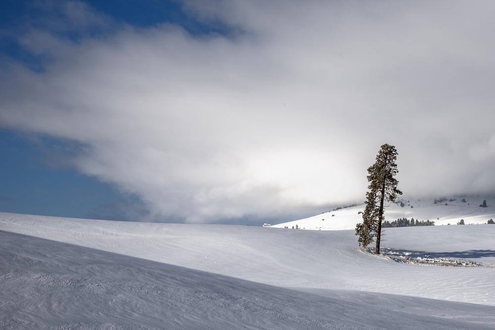 The Calm of Winter