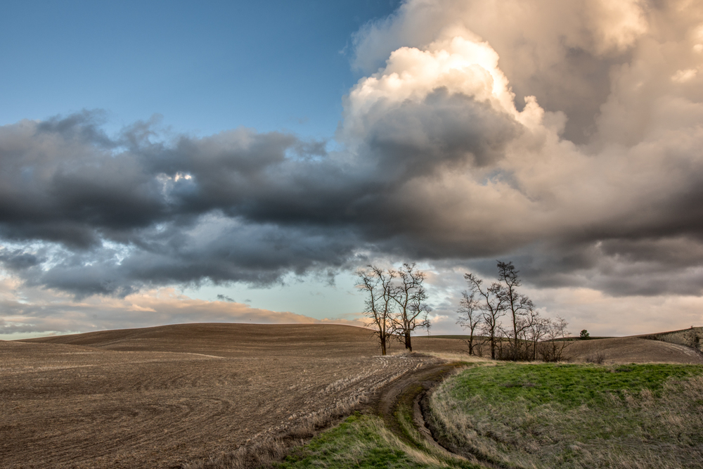 Spring Clouds and Rolling Hills