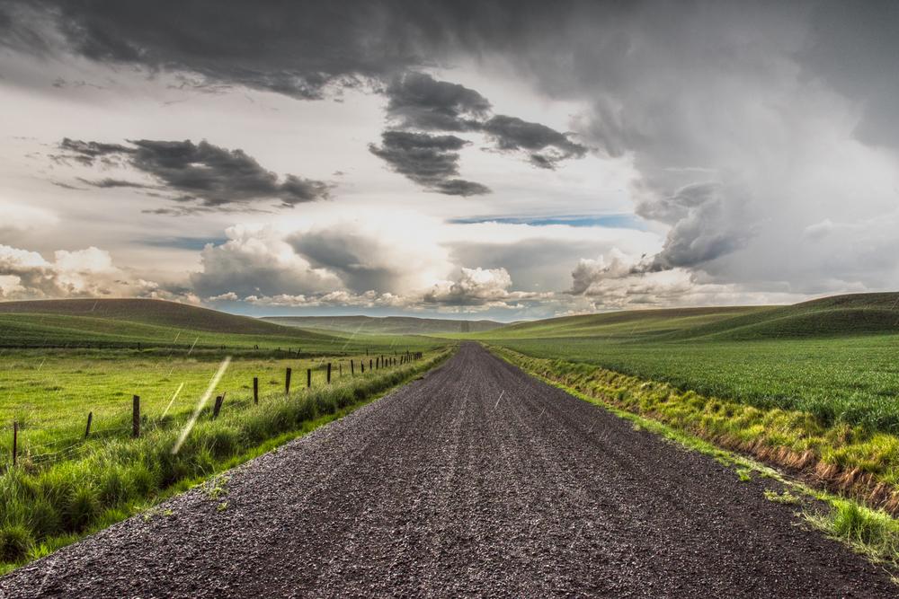 Back Road Summer Rain