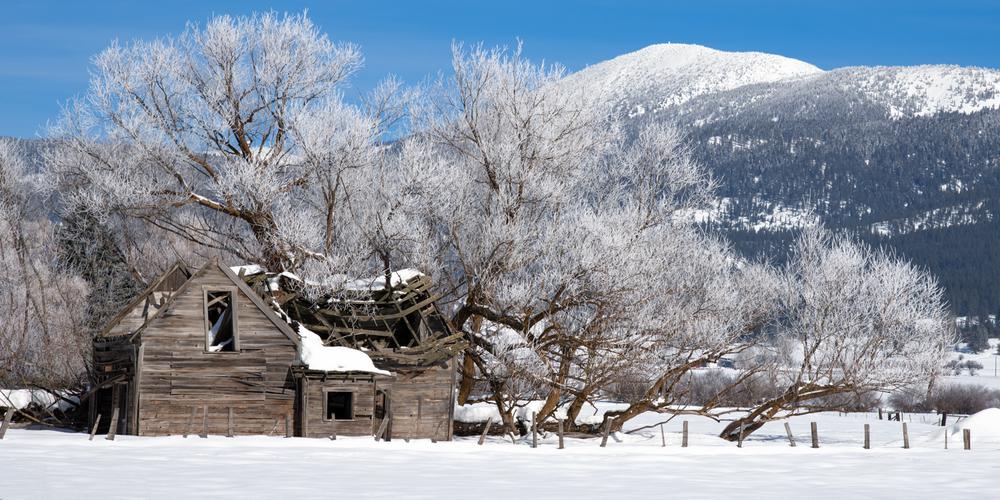 Old Meadow Homestead