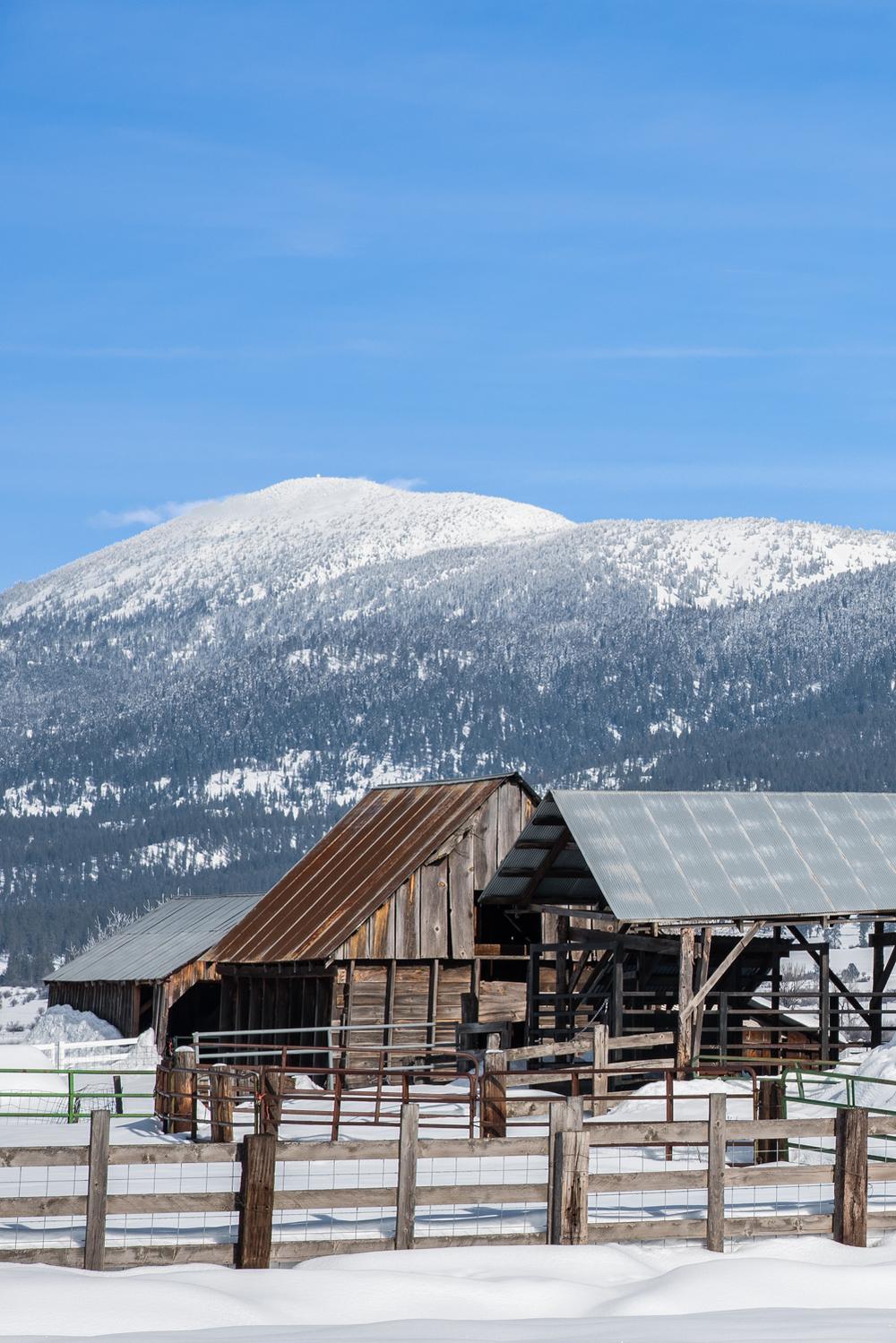 Corral Buildings in Winter