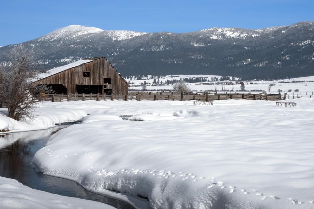 Corrals in Winter
