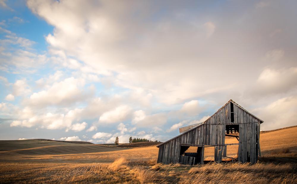 Barely Standing Barn