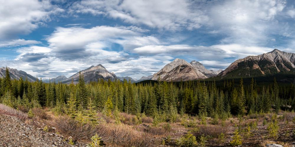 Goat Range Panoramic