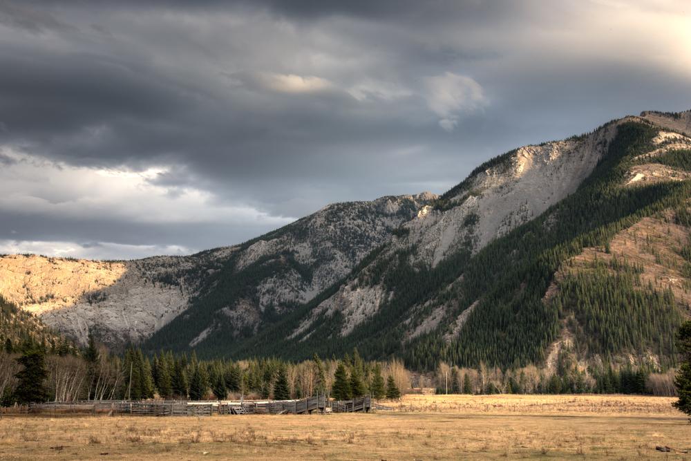 Alberta Mountain Corral