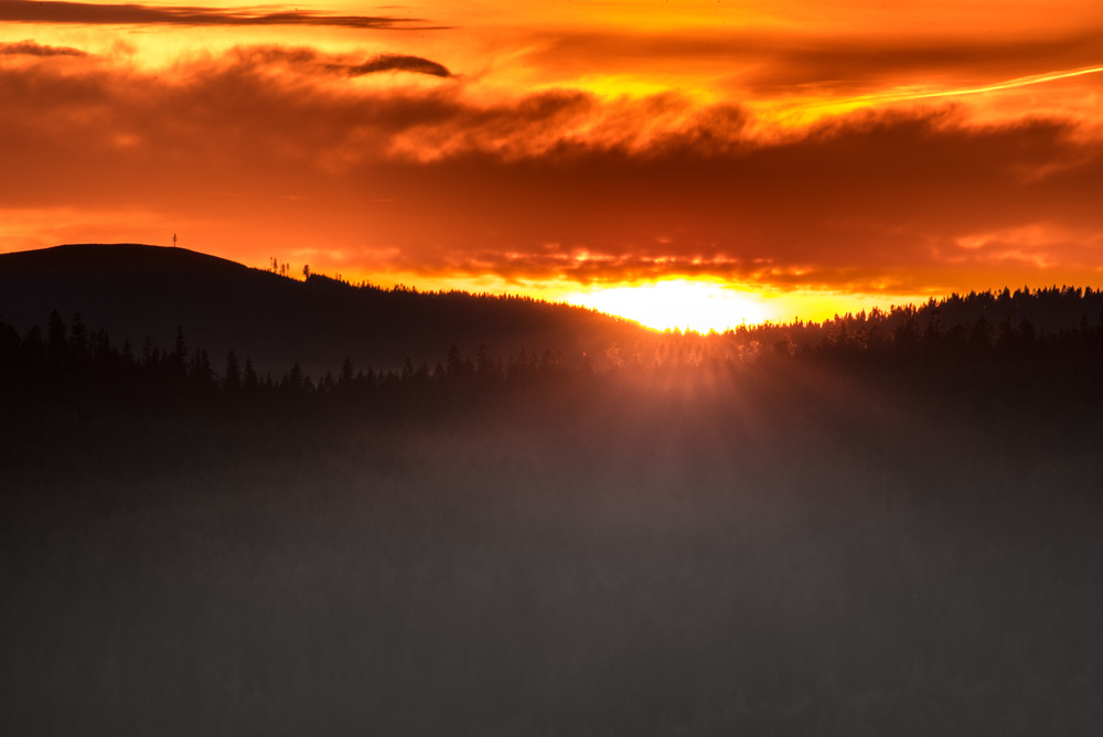 Pine Ridge Sunset