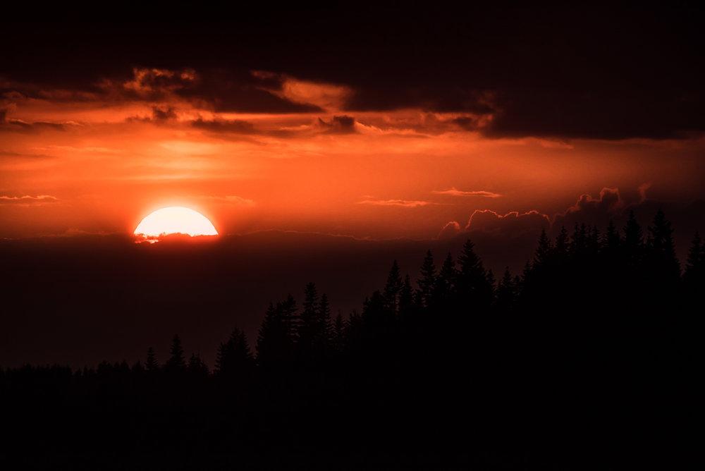 Closeup Autumn Sunset in the Mountains