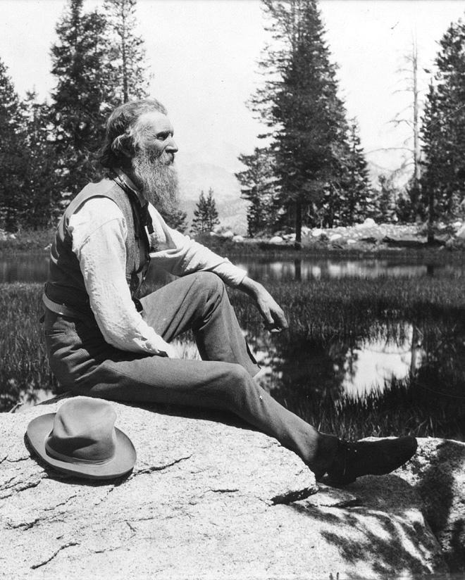 John Muir. Wikimedia commons (link).