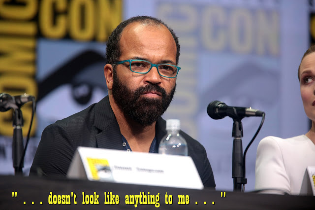 image: Jeffrey Wright speaking at 2017 San Diego Comic Con; photo by Gage Skidmore. Wikimedia commons (  link  ). Caption added.