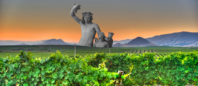 image: Wikimedia commons (Vineyards in California --   link  ; Dionysos and Eros --   link  ).