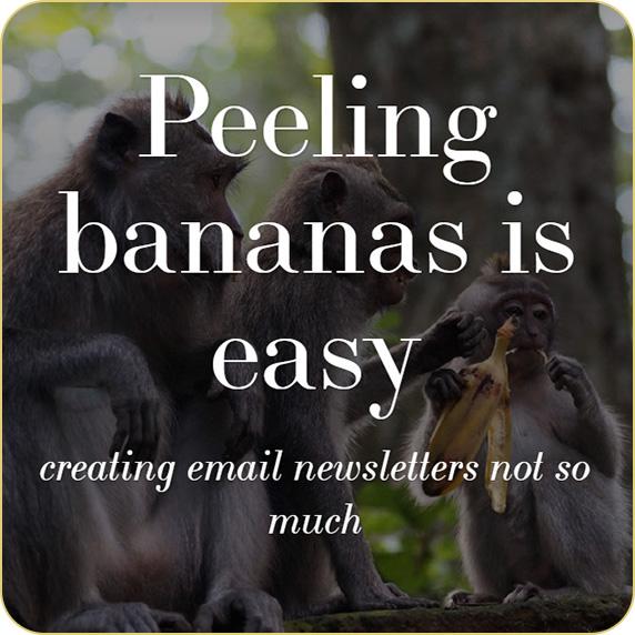 monkeys-email-newsletters-round.jpg