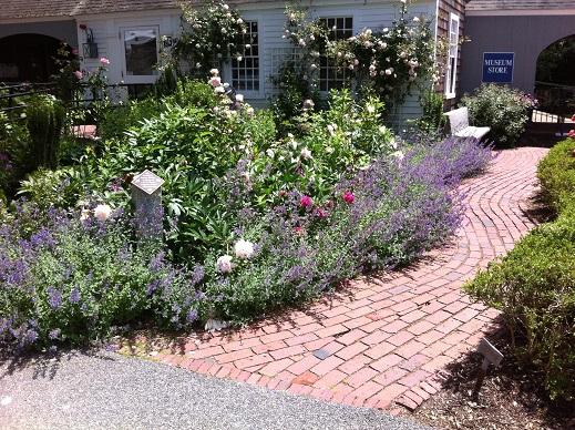 heritage cottage garden.JPG