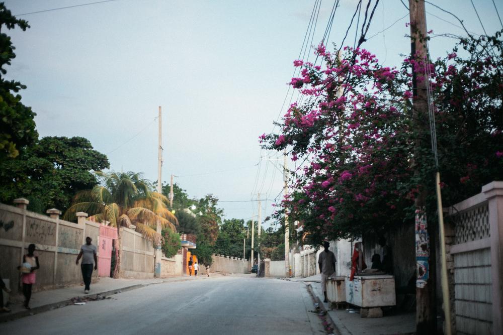 Haiti5starslores190.jpg
