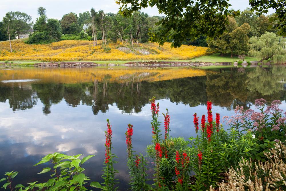 boarshead_pond-1862-Edit.jpg