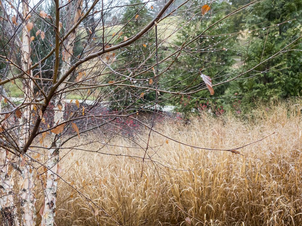 boarshead-stormwater-2985-Edit.jpg