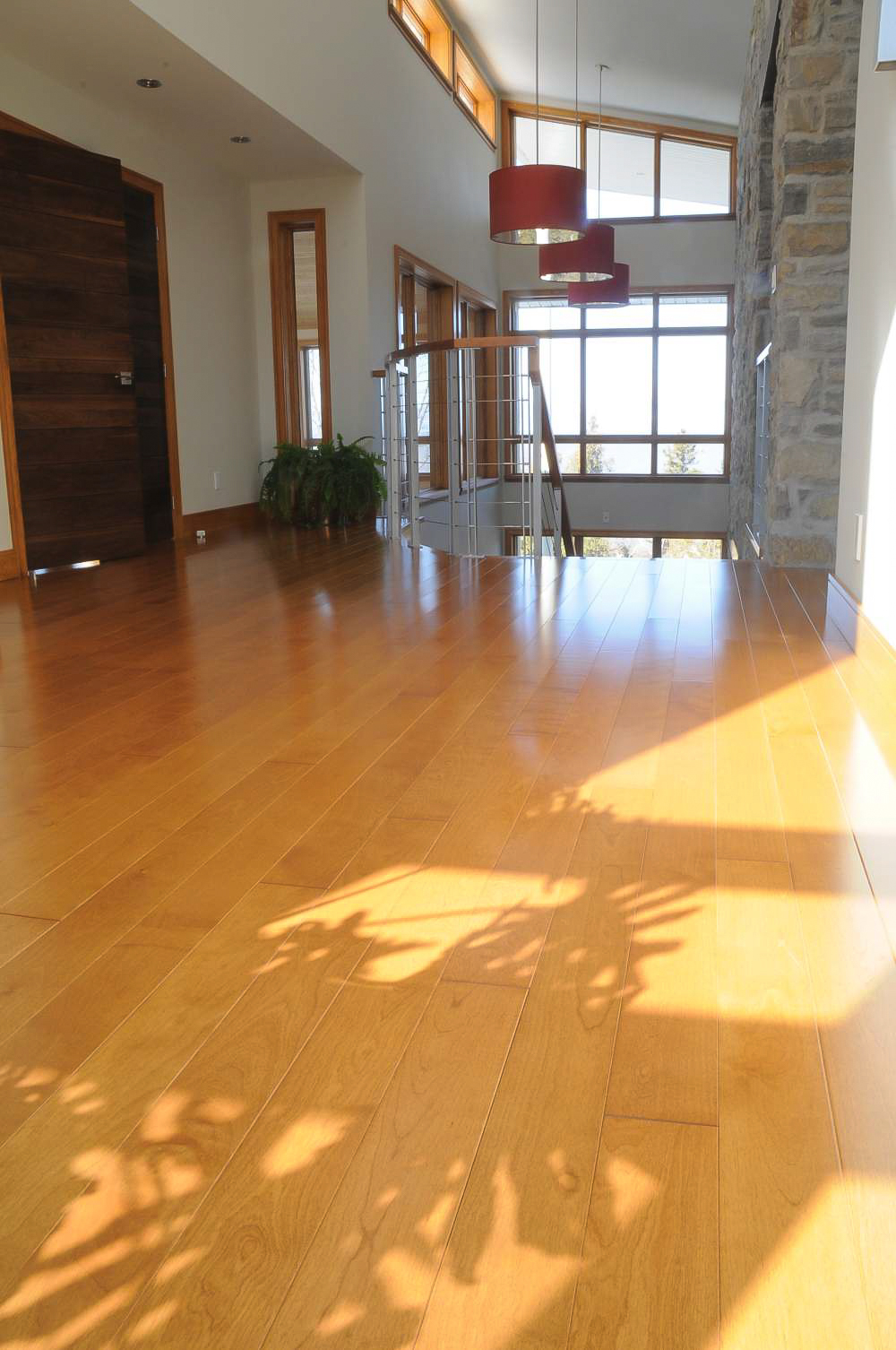 birch select 5 inch plank flooring.jpg