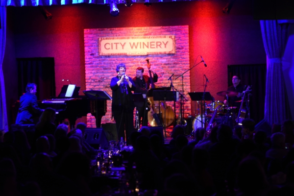 JT full stage City Winery.JPG