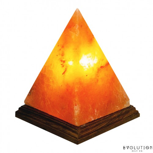 Evolution_Salt_Lamp.jpg