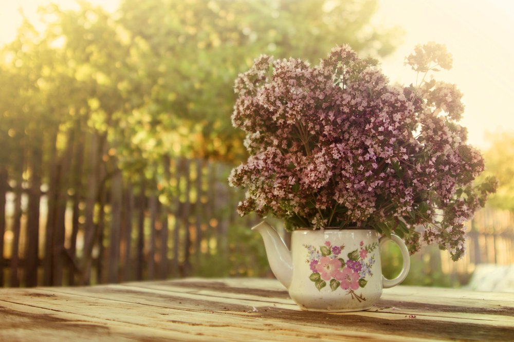 A bouquet of sweet marjoram flowers in a ceramic teapot on a wooden table outdoors