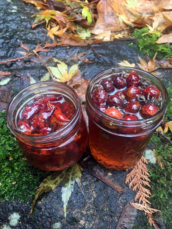 Rose hip infused honey made wth De-seeded dried hips (left) and dried Whole Hips (right)