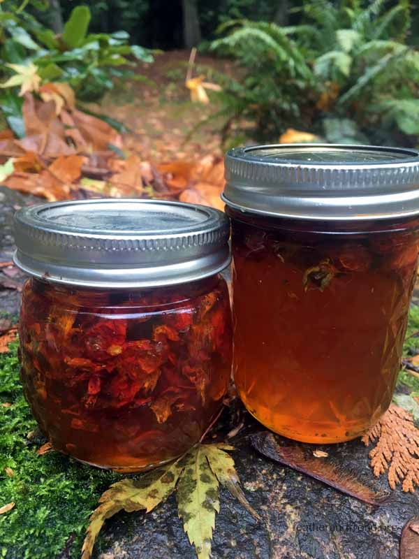 Rose Hip Infused Honey - Ready For Market or Gifting