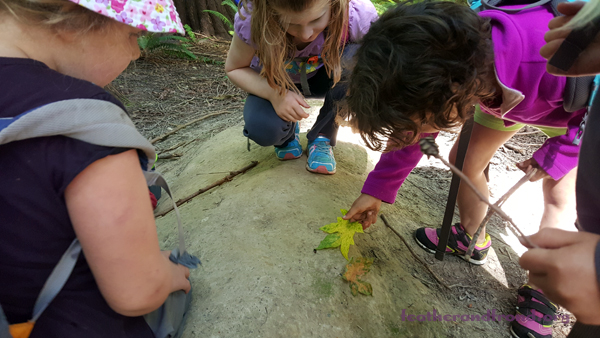 Some Forest School kids looking for TINY tracks in the wet sand