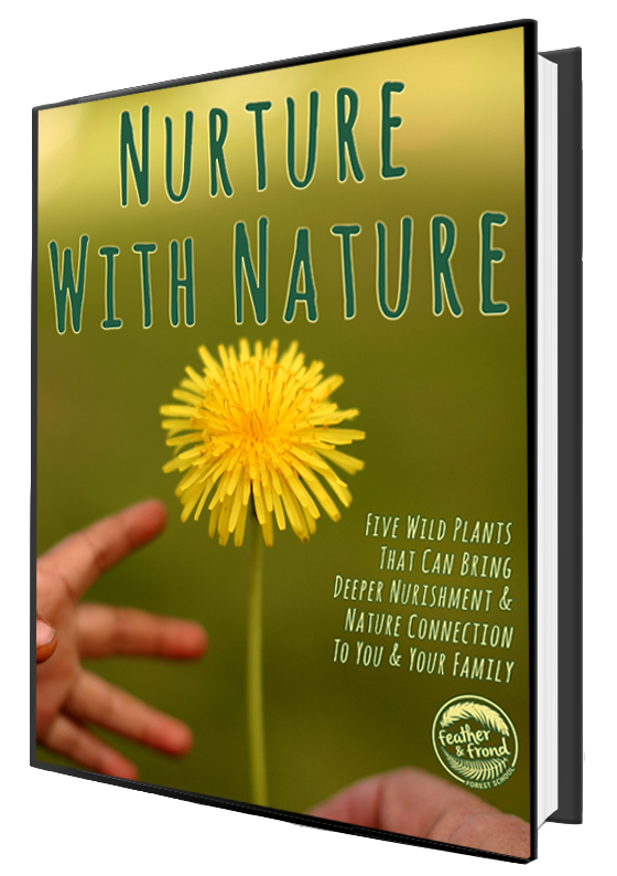 eBook-NurtureWithNature-cover-mockup.png