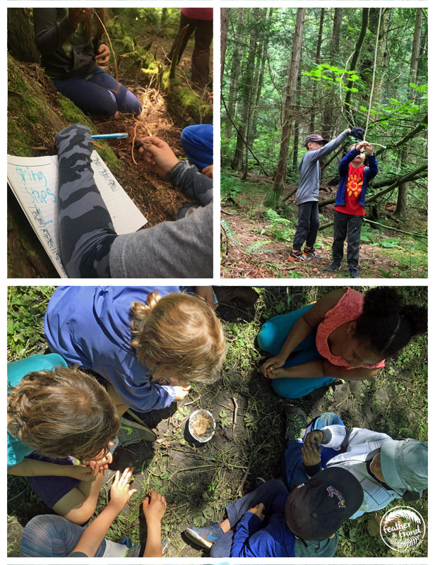 Cedar Root Cordage, Traps and Fairy Fires