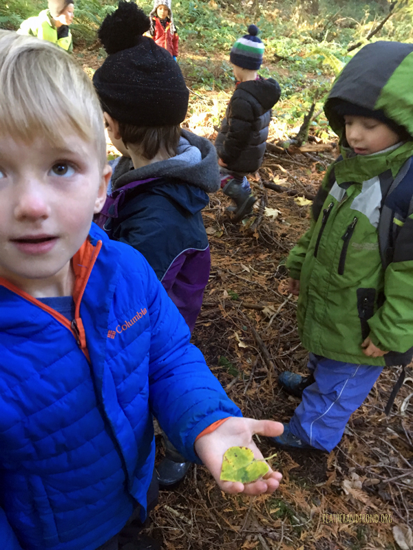 "We found lots of heart-shaped leaves at ""Heart Home"""