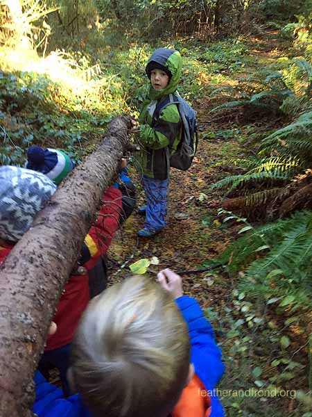 Hauling a log for a shelter ridgepole