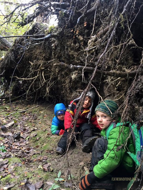 A Natural Shelter