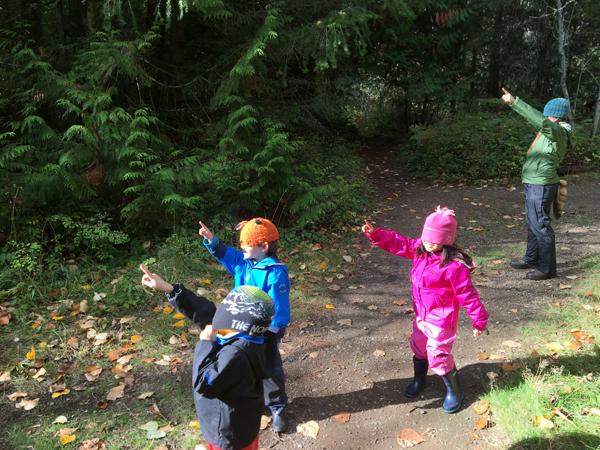 """Close your eyes and point towards the nearest Cedar tree..."""