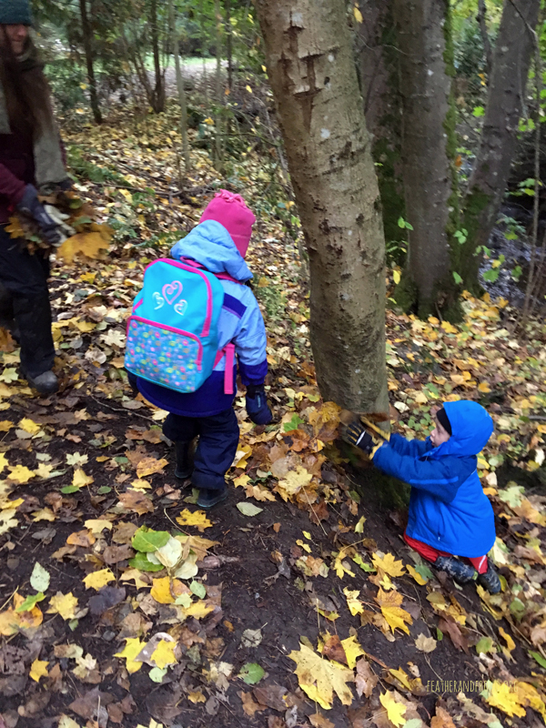 Making a fairy shelter..